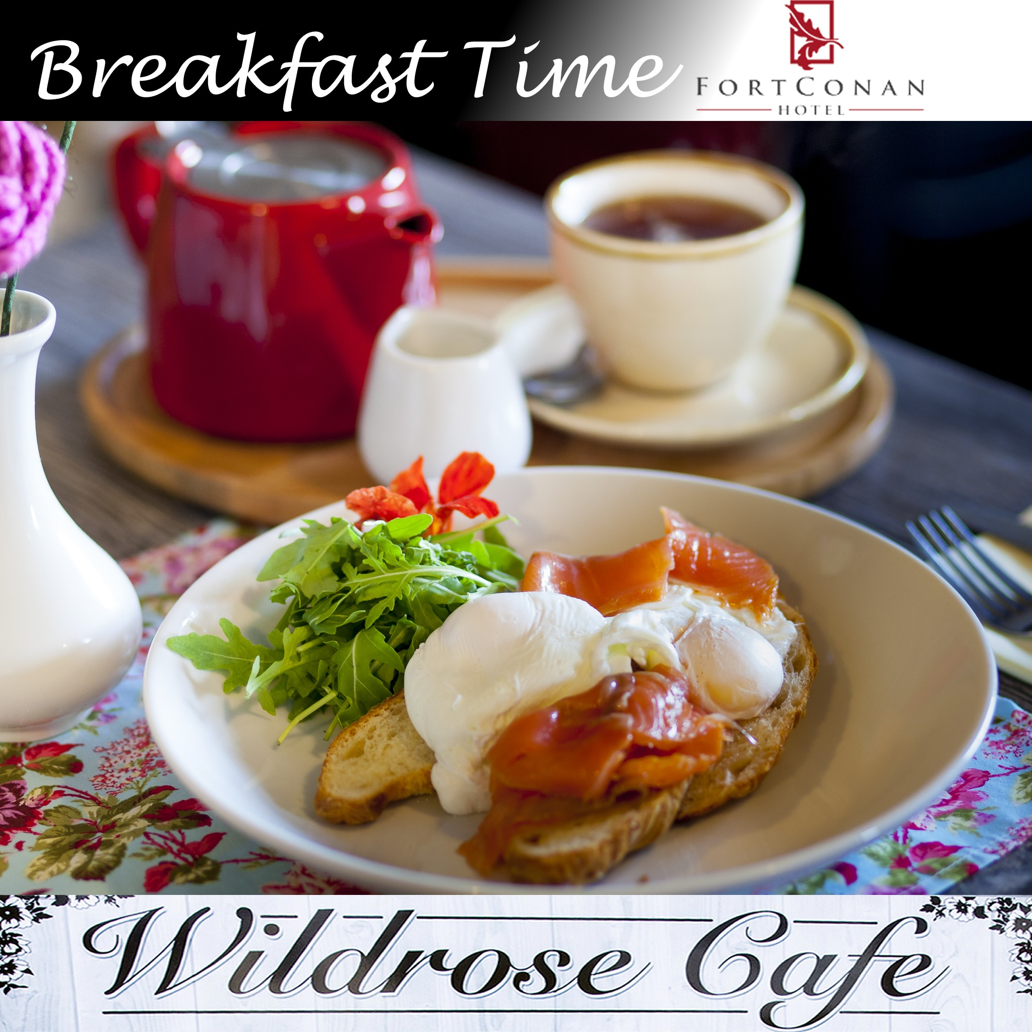 wild rose cafe breakfast