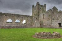 Dunbrody Abbey Wexford