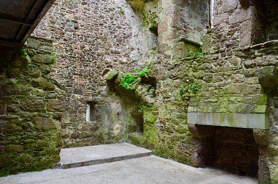 Ballyhack Castle