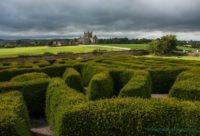 Dunbrody Abbey Maze