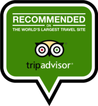 tripadvisor fort conan hotel